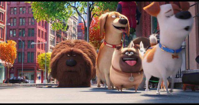 Secret Life of Pets 2 (2019) เรื่องลับแก๊งขนฟู